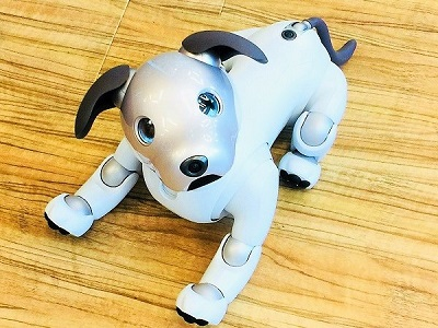 Sony's Aibo: The Revived AI Robot Pet